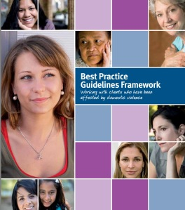 cover of best practice guidelines brochure